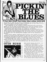 Pickin' the Blues
